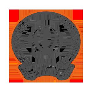 Sepah-logo-LimooGraphic